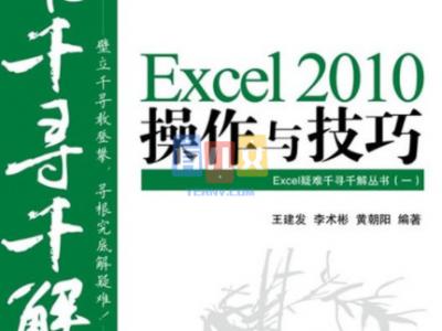Excel疑难千寻千解丛书(一)Excel2010操作与技巧-有儿女 学霸 神兽 学霸笔记