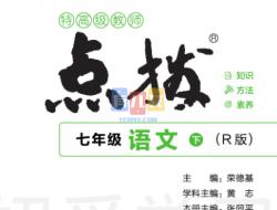 典中点点拨全解初中语文7-9年级下-悄悄变学霸-有儿女 学霸 神兽 学霸笔记
